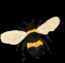 BEE_rotate_30X30_Tekengebied 1_Tekengebied 1